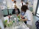 Festiwal na wydziale Biologii